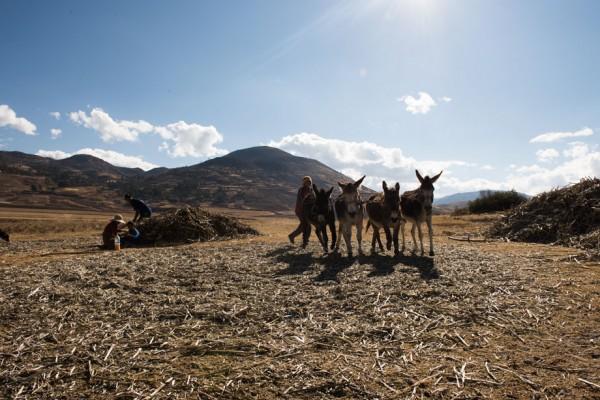 Adventure of Two - Travel blog Cusco Peru